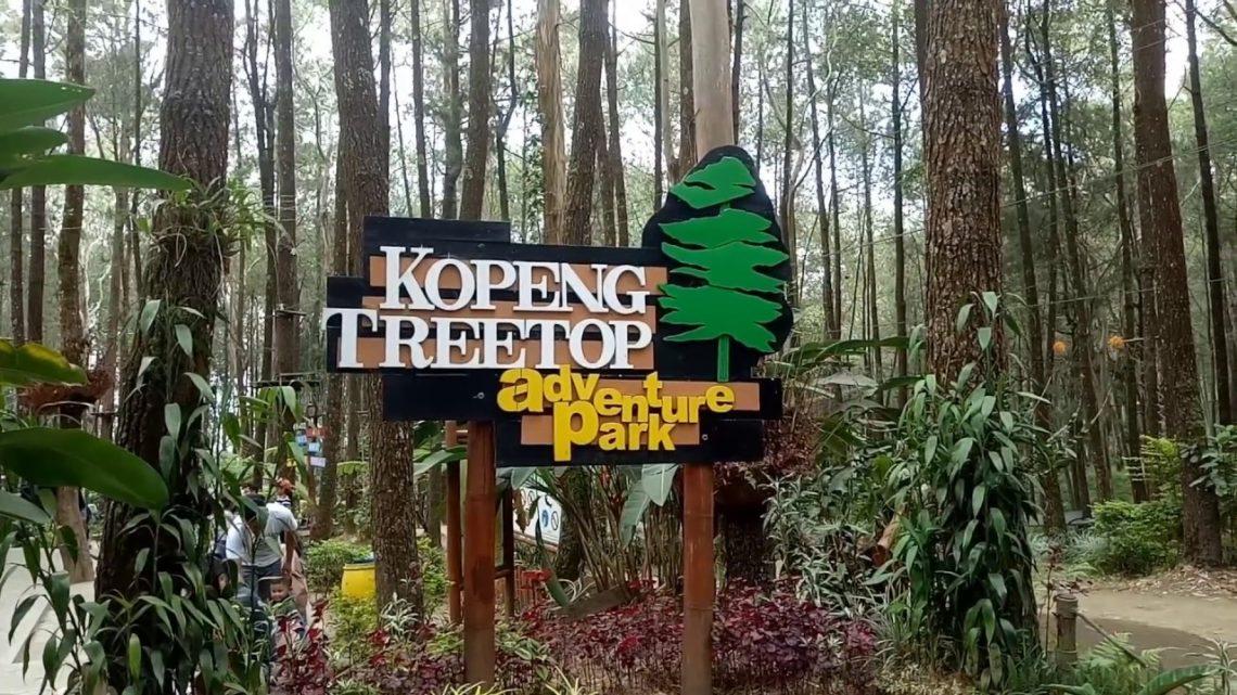 Mengunjungi Kopeng Treetop Adventure Park, Jawa Tengah